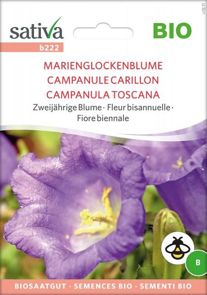 Marienglockenblume Biosaatgut von Sativa