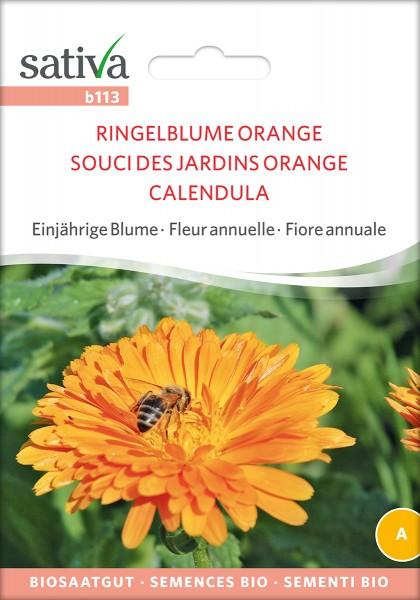 Ringelblume Orange Samen