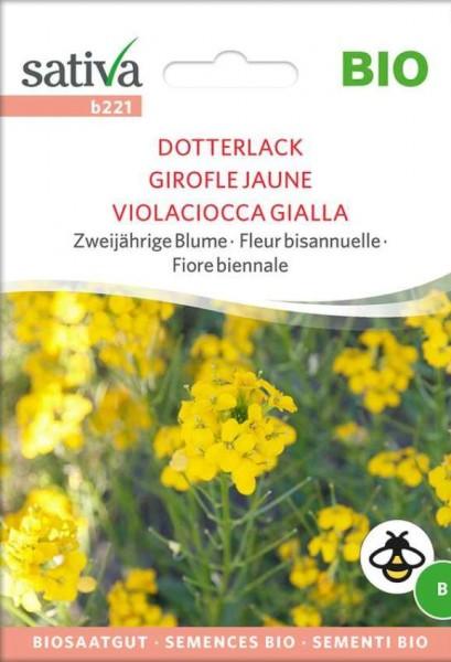 Dotterlack Bio Samen