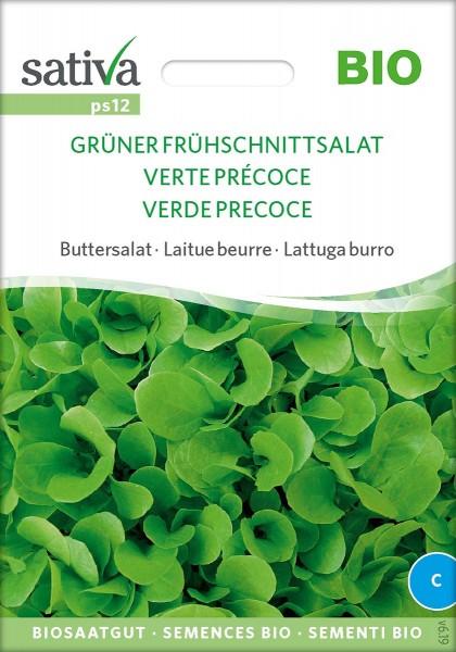 Frühschnittsalat Grüner, Buttersalat Biosamen