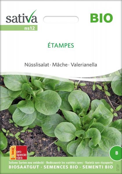 Feldsalat, Ackersalat, Nüsslisalat Étampes Bio Samen
