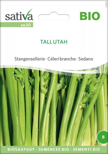 Sellerie Tall Utah Samen, Stangensellerie