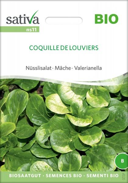 Feldsalat Nüsslisalat, Ackersalat 'Coquille deLouviers' Bio-Samen