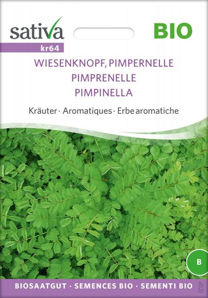 Wiesenknopf, Pimpernelle BIO Samen