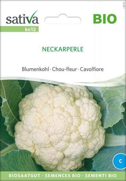 Blumenkohl Neckarperle Samen