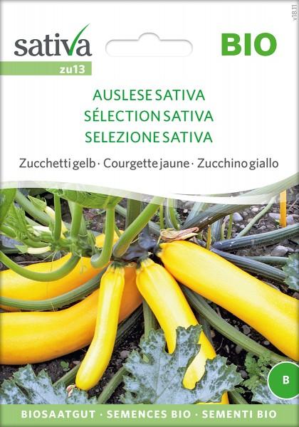 Zucchini 'Auslese' BIO Samen