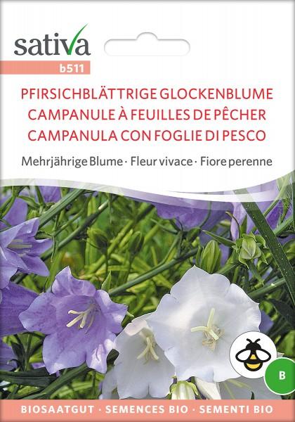 Pfirsichblättrige Glockenblume Samen