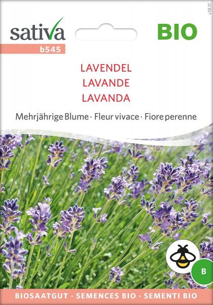 Lavendel BIO Saatgut Sativa