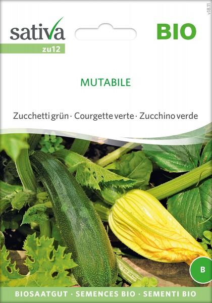 Zucchini 'Mutabile' BIO Samen