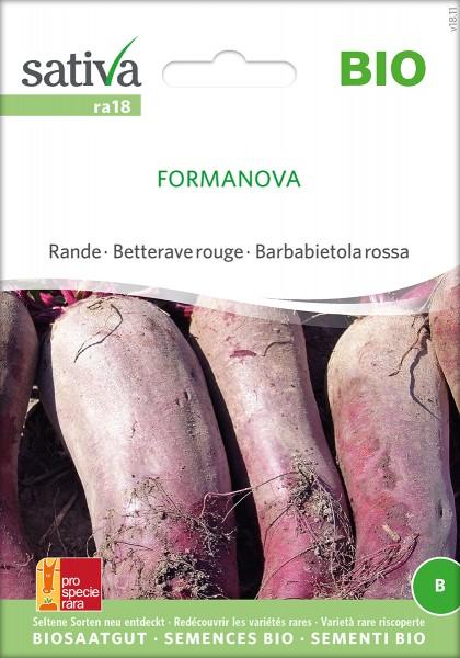 Rote Bete 'Formanova' BIO Samen Sativa