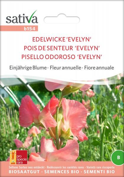 Edelwicke Evelyn Samen