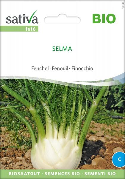 Fenchel Selma Samen