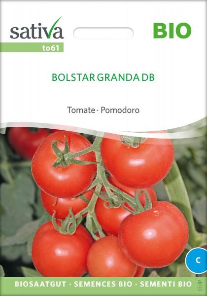 Tomate Bolstar Granda BIO Samen