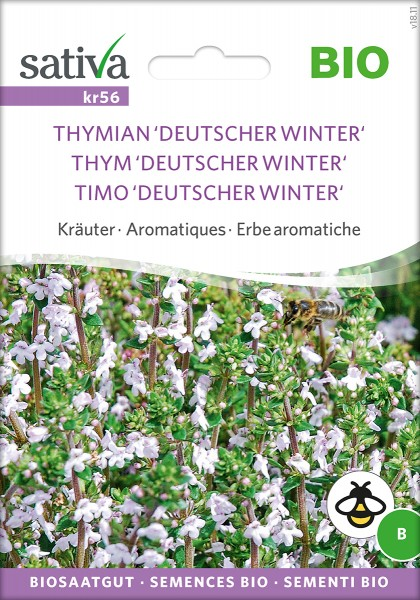 Thymian Deutscher Winter Samen