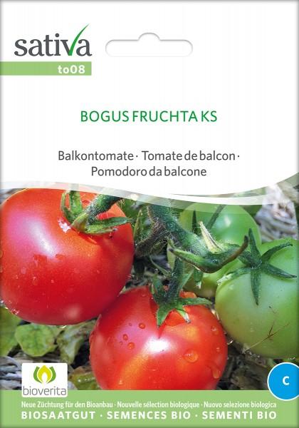 Tomate Bogus Fruchta KS Samen