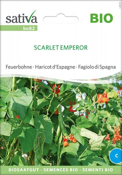 Feuerbohne Scarlet Emperor Samen