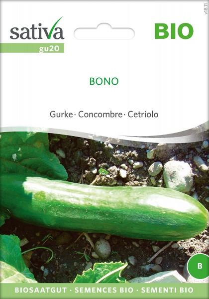 Gurke Bono Samen