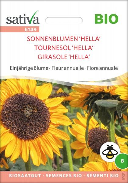 Sonnenblume Hella BIO Samen von Sativa