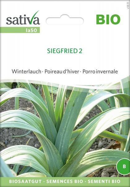Lauch Siegfried 2 Samen