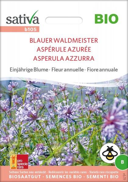 Blauer Waldmeister BIO Samen