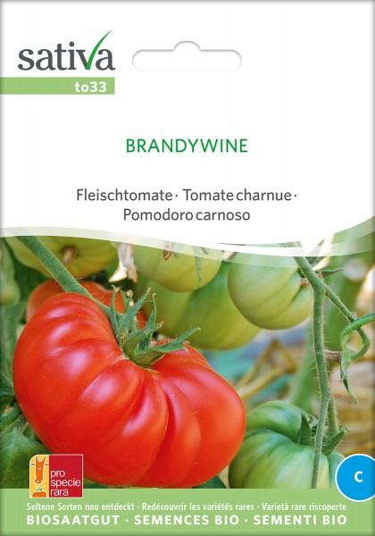 Tomate Brandywine BIO Samen