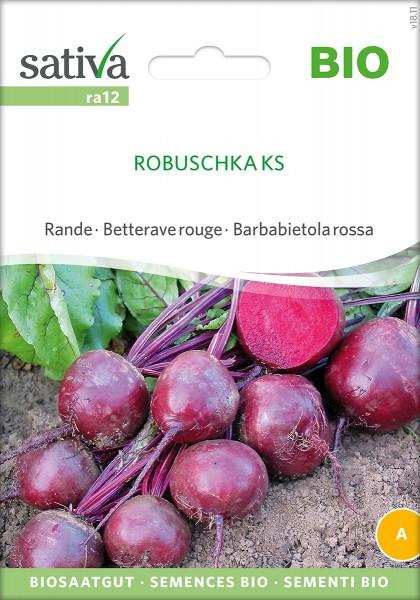 Rote Beete Robuschka KS Samen
