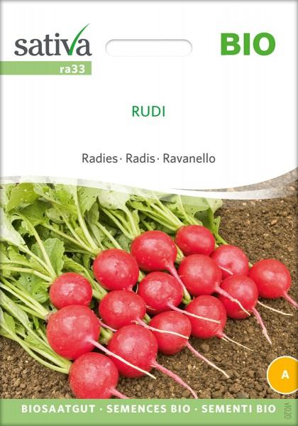 Radieschen Rudi Bio Samen