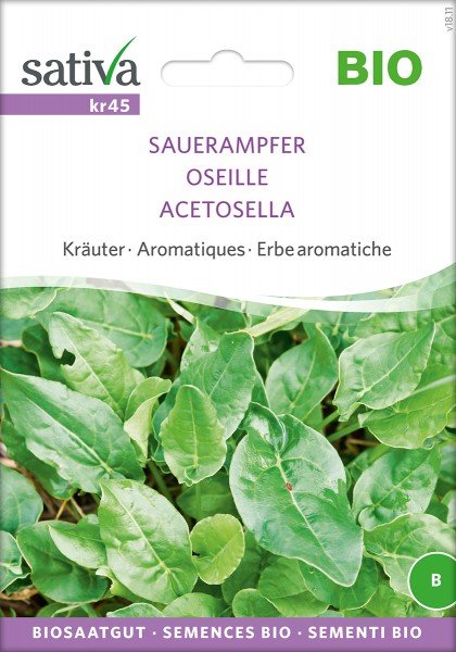 Sauerampfer Sativa
