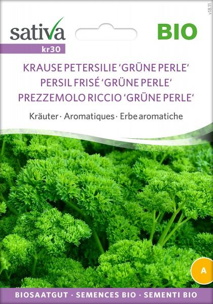Krause Petersilie 'Grüne Perle' Bio Samen