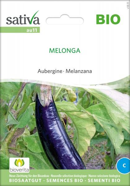 Aubergine Melonga Samen