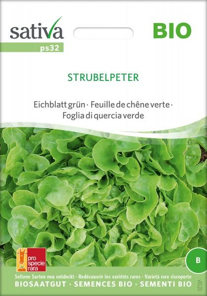 Eichblattsalat 'Strubelpeter' BIO Samen
