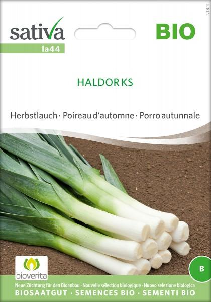 Lauch 'Haldor KS' Samen, Biosaatgut von Sativa