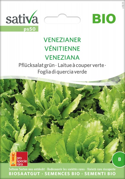 Pflücksalat Venezianer Samen