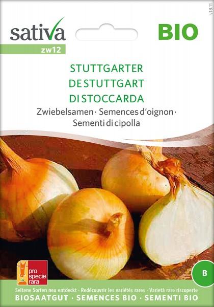 Zwiebel Stuttgarter BIO Samen