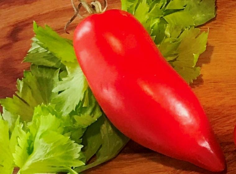 tomate-san-marzano-2