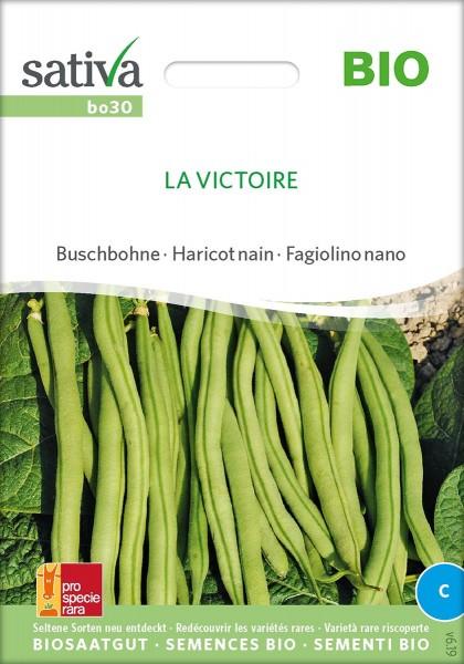 Bohne Buschbohne 'La Victoire', Biosaatgut Sativa