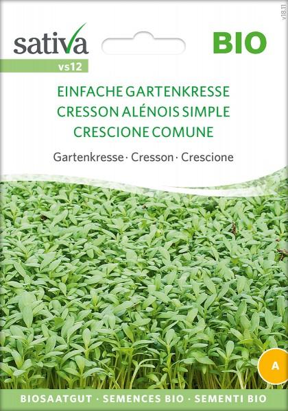 Einfache Gartenkresse Sativa